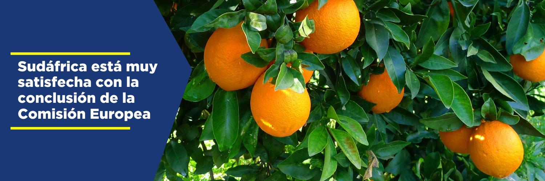 El sector citrícola necesita unirse (VER NOTA)